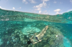 Discovering the snorkeling point